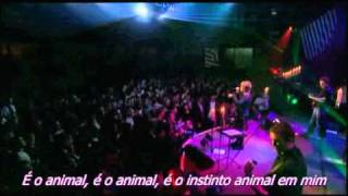 The Animal Instinct  Legendado.avi