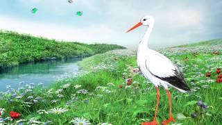 Детски песнички: Щъркел шарен , дългокрак