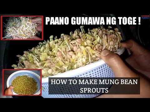 Download Video How To Make Toge - Paano Gumawa Ng Toge