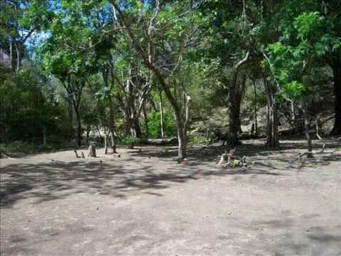 For Sale Land in Nicaragua $400 per acre