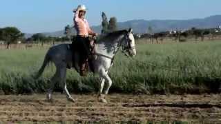 Videoclip vaquero XV años Monica Elizabeth