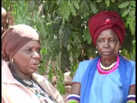 Village Elders Meet – Limpopo – South Africa