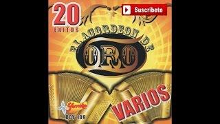 El Acordeon de Oro - Cumbia Mazahua