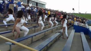 Golden Passionettes - 500 Degrees