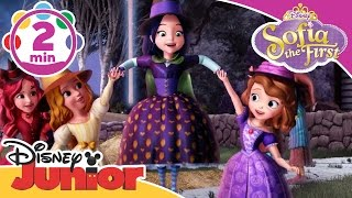 Sofia the First |  Broomstick Dance | Disney Junior UK