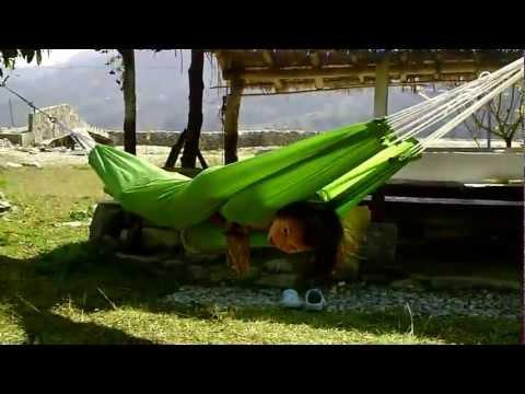 overlander-camping2012 pokhara pame