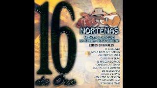Nicasio Quinteros - Mujeres Divinas