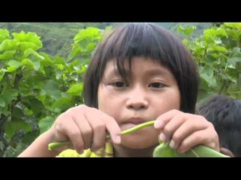 Nepal- Bilan mission