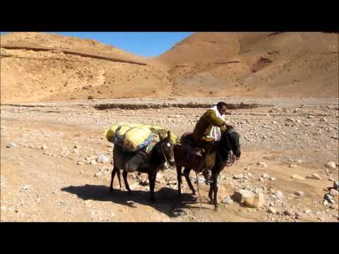 Equitrekking Morocco –  Dades Gorges | Horseriding Vacations – Equitrekking with Nomads Morocco