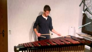 Maroon 5 - Payphone Marimba Cover