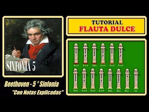 Jouer la Symphonie N° 5 de Beethoven à la flûte
