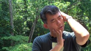 Neck Pain - How To Crack Your Neck