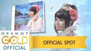 ลูกทุ่งกีตาร์หวาน ตั๊กแตน ชลดา : วางแผงแล้ว วันนี้ !! ในรูปแบบ CD 【Official Spot】