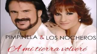 A MI TIERRA VOLVERE - PIMPINELA Y LOS NOCHEROS - KARAOKE