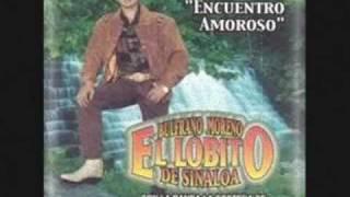 El Lobito de Sinaloa - Me voy a cortar las venas