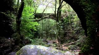 Ferrolterra,come to the north of Galicia!