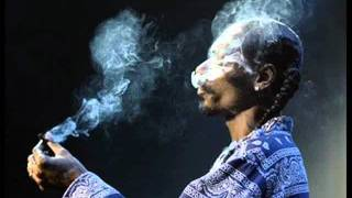 Riders On The Storm - Snoop Dogg feat. the Doors[Ferre cut edit]