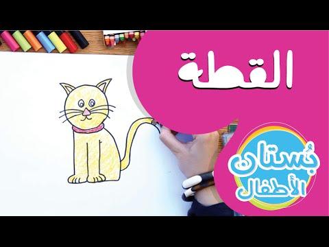 سلسلة رسمة ومعلومة - ح15: كيف أرسم قطة