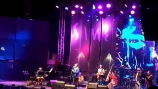 JP Simões | Festival das Músicas do Mundo 2013  1/4