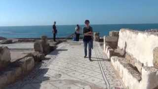 On the Road in Israel & Palestine - Part I