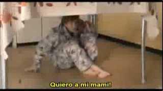 """""""Eterno Resplandor de una Mente sin Recuerdos"""" Trailer (Subtitulado al español)"""