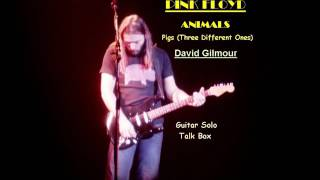 Pink Floyd Animals Pigs Guitar Solo (talk Box)
