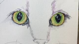 How to paint a cat's green eyes