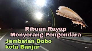 Ketika musim hujan hati - hati dengan Serangga ini || Motovlog Kota Banjar