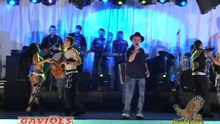Gavioes do Forro - Forro Lambada Reggae Baiao
