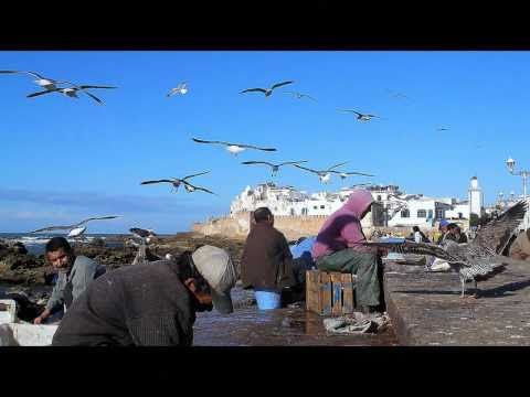 Maroc,Marocco,Maroko 2011 –  Essaouira – Janvier,January,Leden