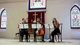 G.F. Handel - La Rejouissance (Flute Violin Cello Trio)