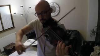 The Arena (Lindsey Stirling cover) - Benchfiddler