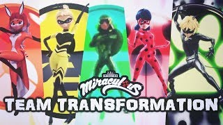 Miraculous Ladybug | Team Transformation [QUEEN BEE, CARAPACE, Rena Rouge, Cat Noir & Ladybug]