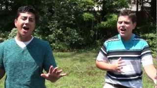 David Guetta - Titanium ft. Sia (Dalton & Dylan Cover)