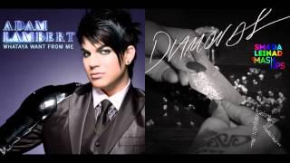 Adam Lambert vs. Rihanna - Diamonds From Me