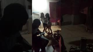 Meninas dança forro,a menina de saia e a que dança,tô de mini saia...