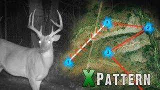 Pre-Season Scouting Tips For Deer Hunters