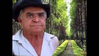 MEU ETERNO PAI: MARCO BRASIL