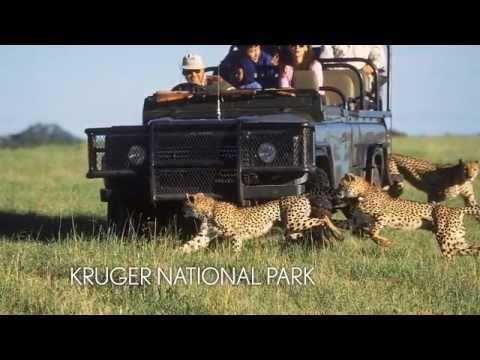 Abercrombie & Kent: Spotting Kruger National Park's Elusive Leopards