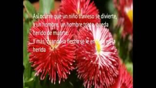 Balada del amor loco - Andrés Cifuentes Lozano