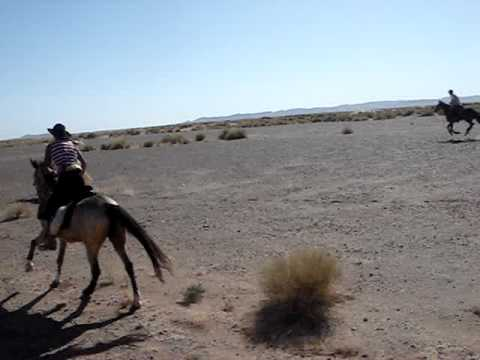 Silvia riding across the Moroccan desert on Cowcup!