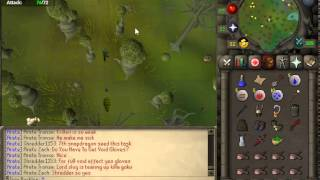 Runescape 2007 - Panic in the Heart of the Haunted Woods.