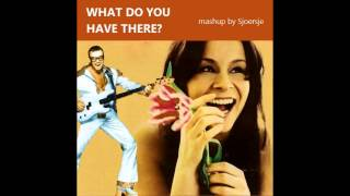 Total Touch / Stefan Raab - What Do You Have There? (mashup by Sjoersje)