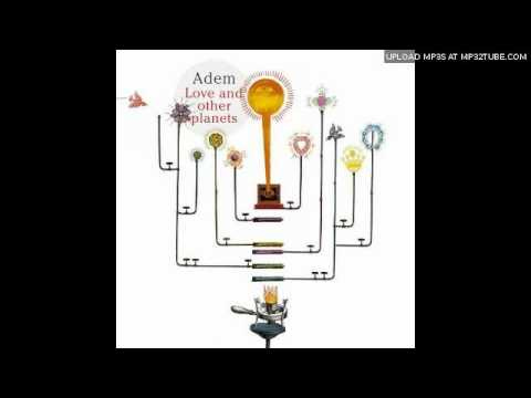 adem-love-and-other-planets-omar-morean