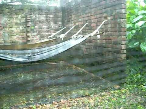 Regnvejr 6/10 2009