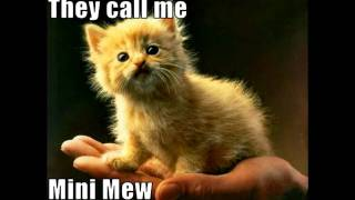 LOLCats in Call Me Uprising Blondie Muse LOL Cats CjR MiX