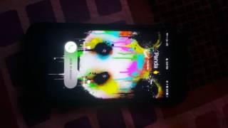 Designer panda - ringtone for iPhone 7 pluse