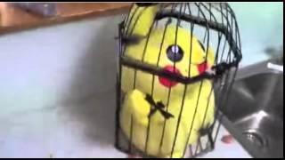Picachu el maldito Pikachu width=