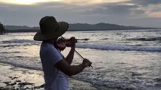 Princesa ❤️ - violín 🎻