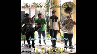 Los Plebes De Jesus Maria - Amigos Tuve Una Novia (En Vivo Fp 2013)
